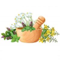 Mezcla Plantas Medicinales